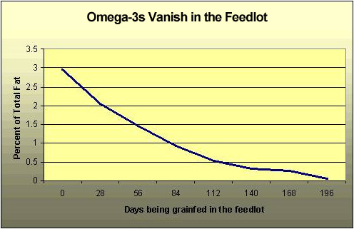 Omega 3s Vanish in the Feedlot